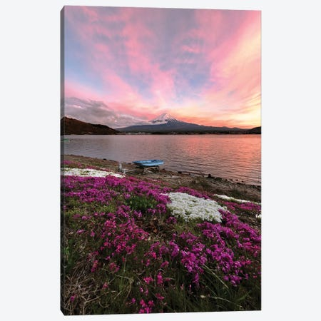 Spring In Japan V Canvas Print #DUE55} by Daisuke Uematsu Canvas Art Print
