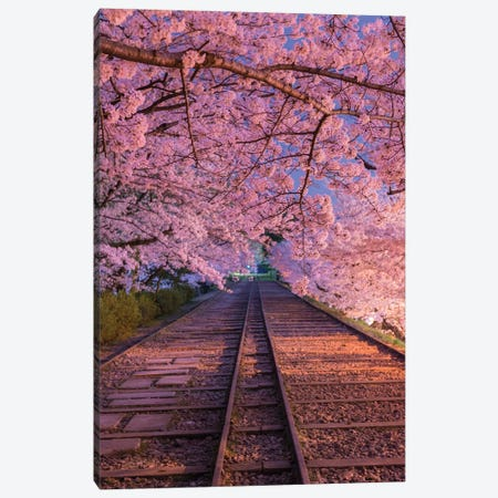 Spring In Japan VIII Canvas Print #DUE58} by Daisuke Uematsu Canvas Art