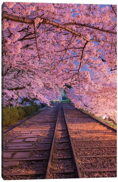Spring In Japan VIII Canvas Art Print