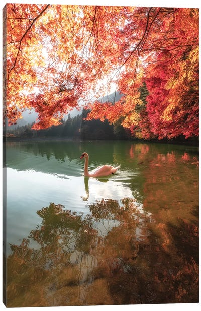 Autumn In Japan V Canvas Art Print