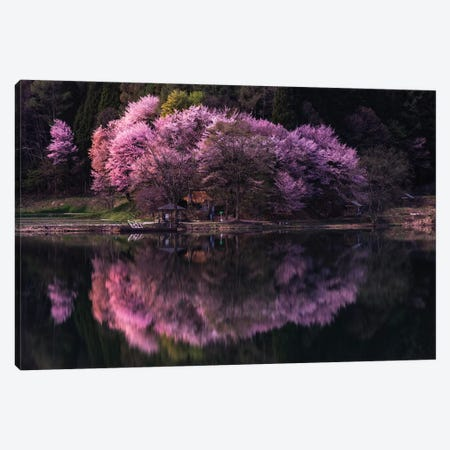 Spring In Japan XI Canvas Print #DUE61} by Daisuke Uematsu Canvas Print