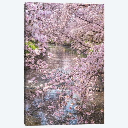 Spring In Japan XV Canvas Print #DUE65} by Daisuke Uematsu Canvas Wall Art