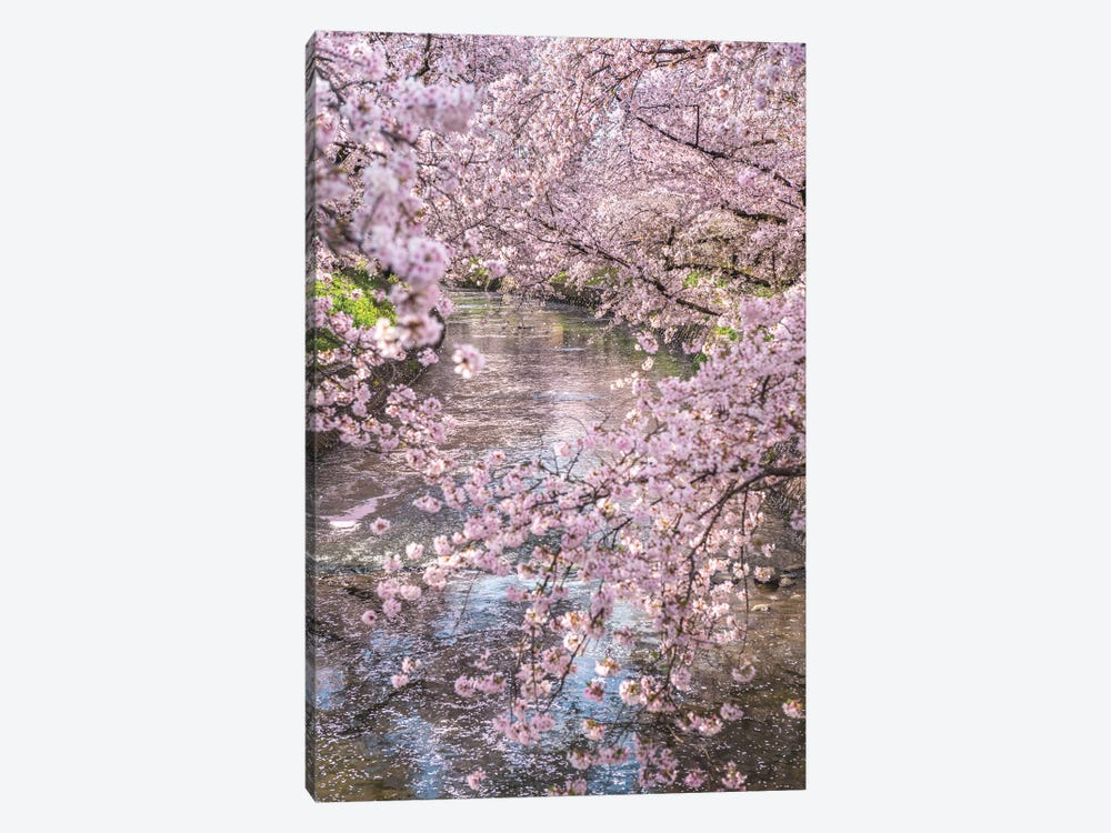 Spring In Japan XV by Daisuke Uematsu 1-piece Canvas Artwork