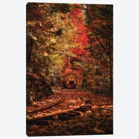 Autumn In Japan VI Canvas Print #DUE7} by Daisuke Uematsu Art Print