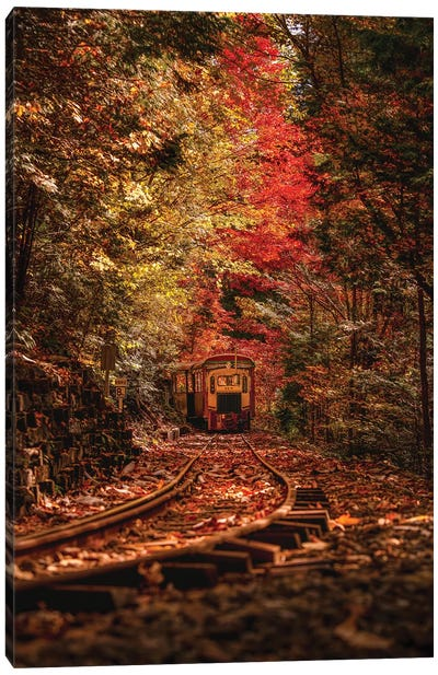 Autumn In Japan VI Canvas Art Print