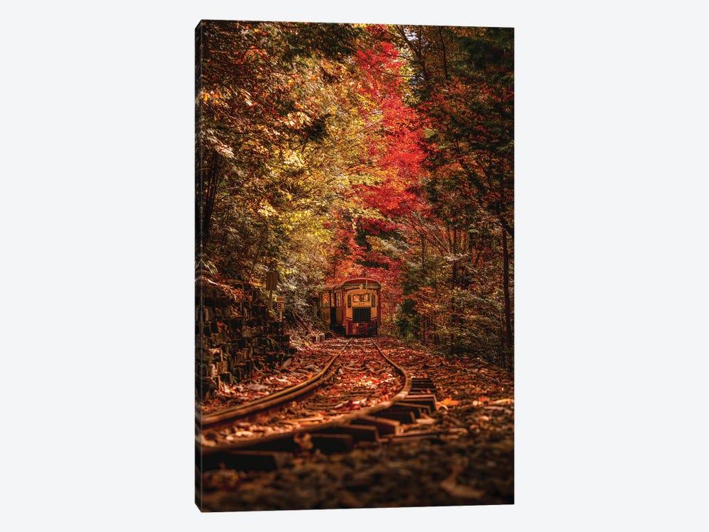 Autumn In Japan VI by Daisuke Uematsu 1-piece Canvas Artwork