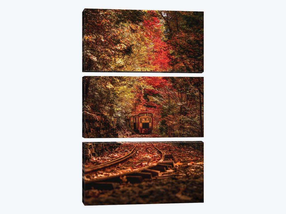 Autumn In Japan VI by Daisuke Uematsu 3-piece Canvas Artwork