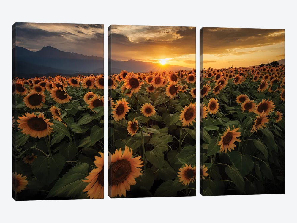 Summer In Japan VI by Daisuke Uematsu 3-piece Canvas Print