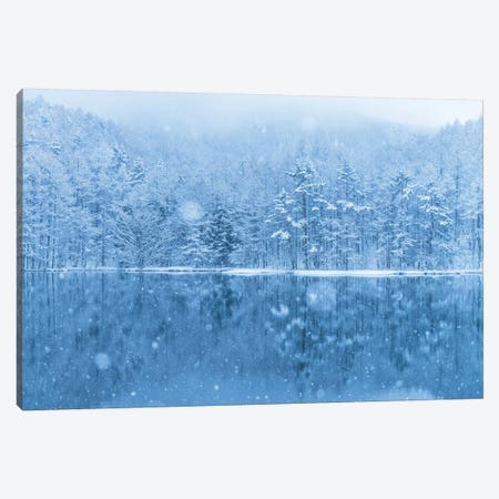 Winter In Japan III Canvas Print #DUE86} by Daisuke Uematsu Canvas Art