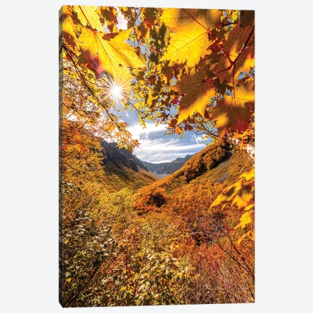 Autumn In Japan VII Canvas Print #DUE8} by Daisuke Uematsu Canvas Art