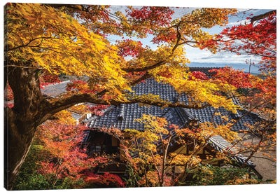 Autumn In Japan XXIV Canvas Art Print