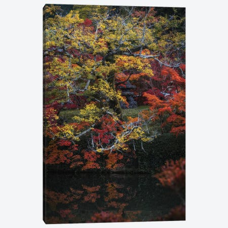 Autumn In Japan XXV Canvas Print #DUE95} by Daisuke Uematsu Art Print