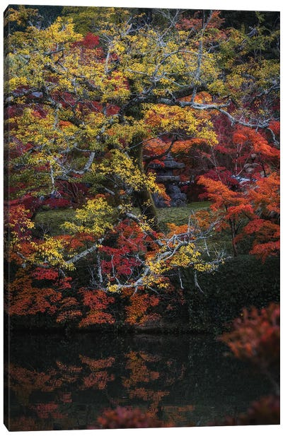 Autumn In Japan XXV Canvas Art Print
