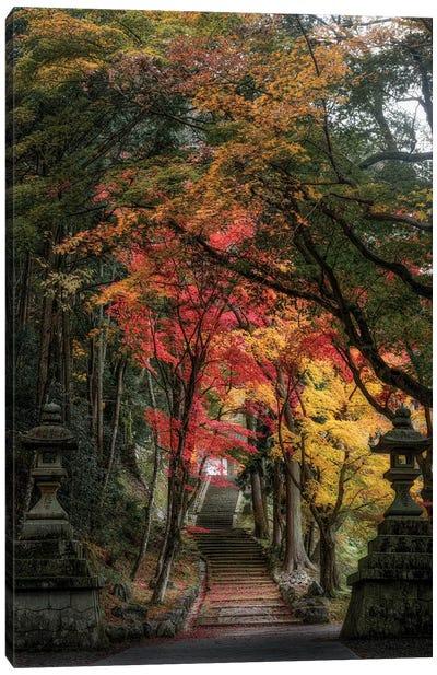 Autumn In Japan XXVI Canvas Art Print