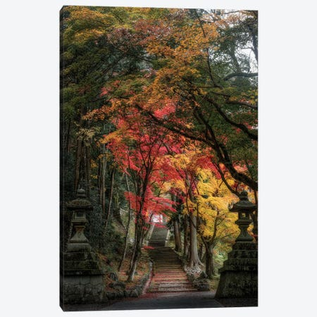 Autumn In Japan XXVI Canvas Print #DUE96} by Daisuke Uematsu Art Print
