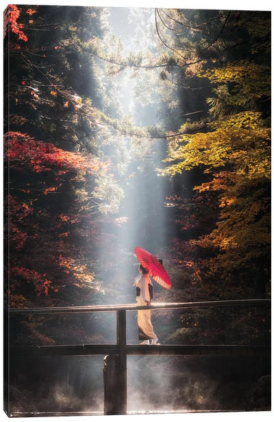 Autumn In Japan XXVII Canvas Art Print