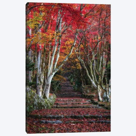 Autumn In Japan XXVIII Canvas Print #DUE98} by Daisuke Uematsu Canvas Wall Art