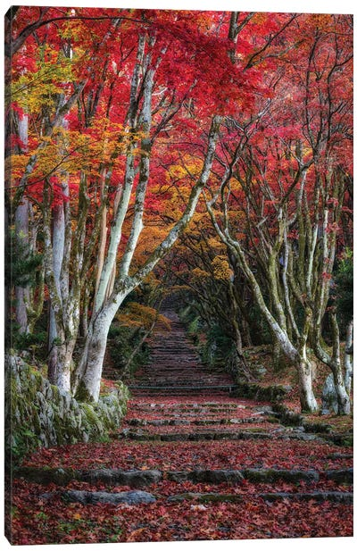 Autumn In Japan XXVIII Canvas Art Print