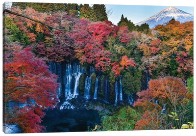 Autumn In Japan IX Canvas Art Print