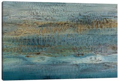Filtered Consciousness Canvas Art Print