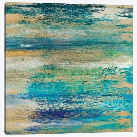 Filtered Sundown Canvas Print #DUN16} by Alicia Dunn Canvas Wall Art
