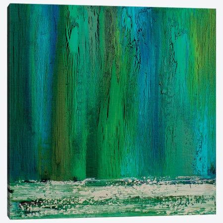 Rainwater Canvas Print #DUN39} by Alicia Dunn Canvas Print