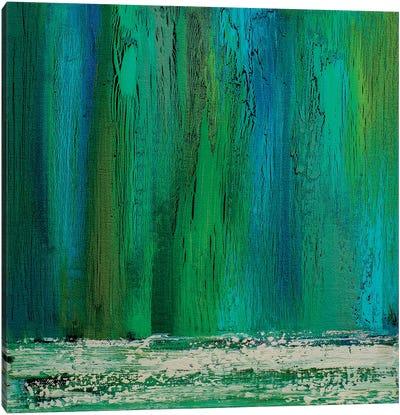 Rainwater Canvas Art Print
