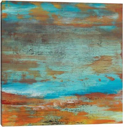 Carry Me Home Canvas Print #DUN4