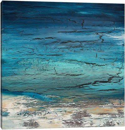 Winter's Approach Canvas Art Print