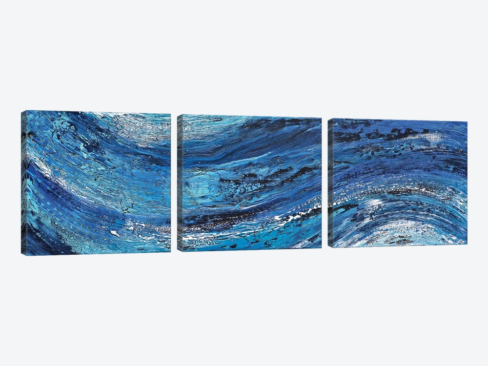 Ecstasy in Motion by Alicia Dunn 3-piece Canvas Print