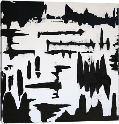 Observed Canvas Art Print