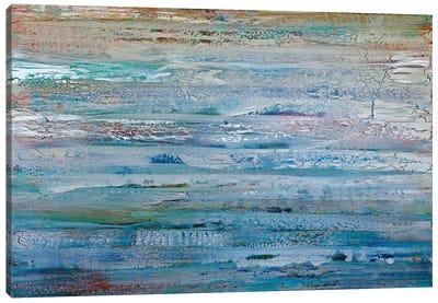 Windswept Canvas Art Print