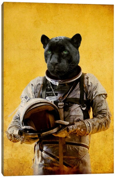 Space Jag Canvas Art Print