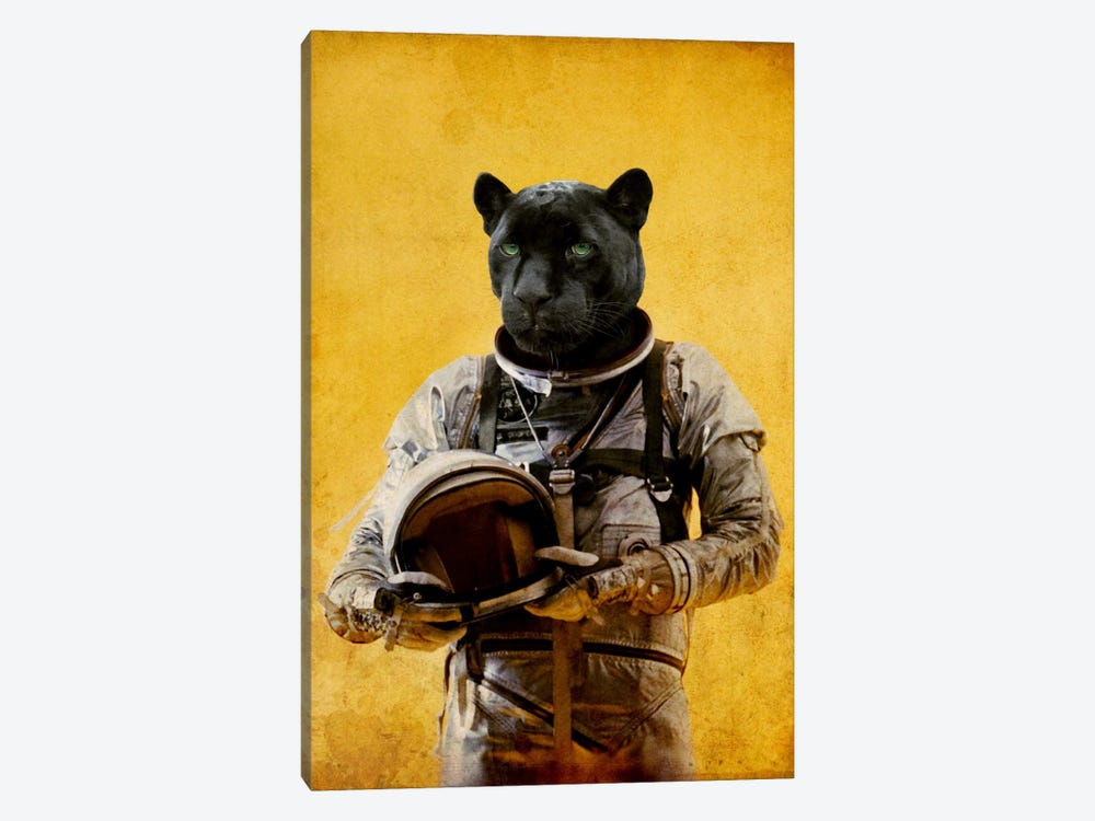 Space Jag by Durro Art 1-piece Canvas Artwork