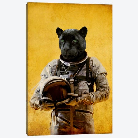 Space Jag Canvas Print #DUR18} by Durro Art Art Print