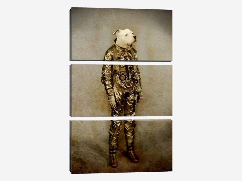 Tough by Durro Art 3-piece Art Print
