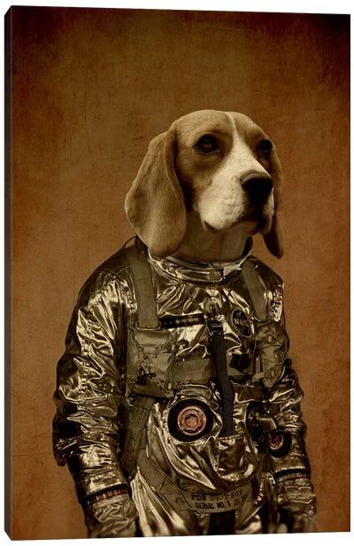 Beagle Canvas Print #DUR2