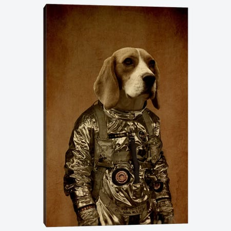 Beagle Canvas Print #DUR2} by Durro Art Canvas Artwork