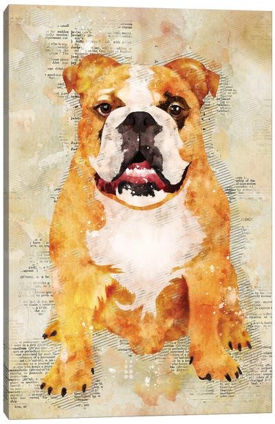 Boxer Dog by Durro Art Canvas Art Print