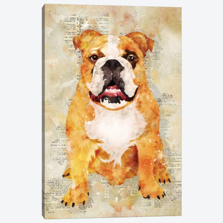 Boxer Dog Canvas Print #DUR343} by Durro Art Canvas Wall Art