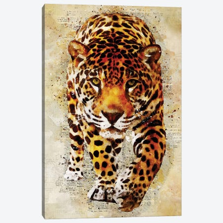 Leopard Canvas Print #DUR348} by Durro Art Canvas Art