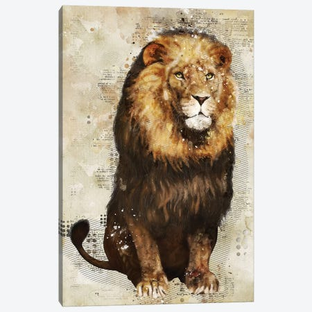 Lion Canvas Print #DUR350} by Durro Art Art Print