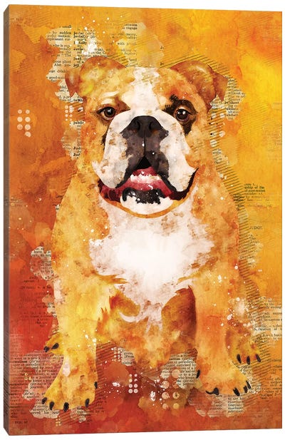 Boxer Dog Wild by Durro Art Canvas Art Print