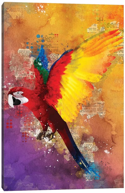 Parrot by Durro Art Canvas Art Print