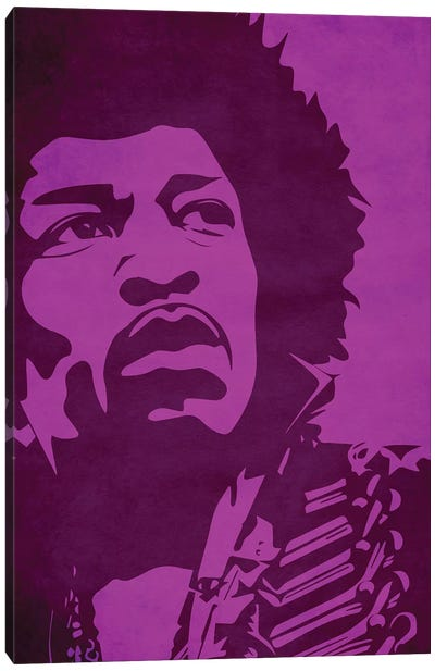 Purple Haze Canvas Art Print