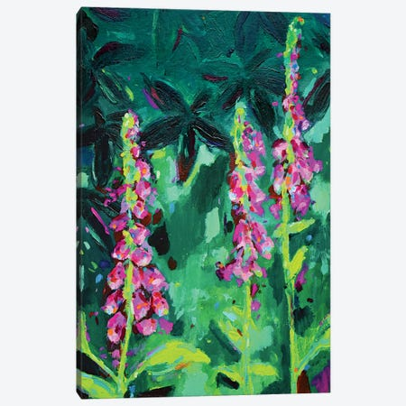 Foxgloves Canvas Print #DUW16} by Dawn Underwood Canvas Art Print