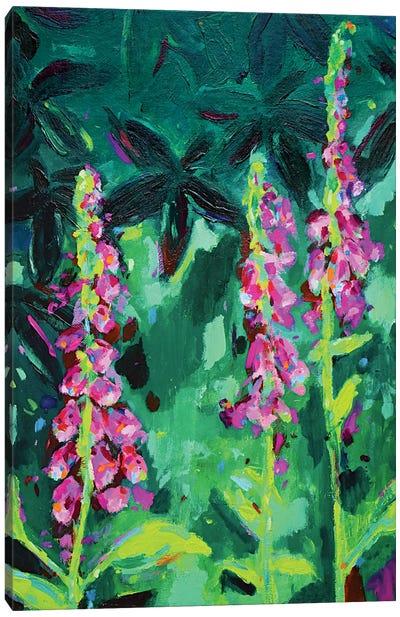Foxgloves Canvas Art Print