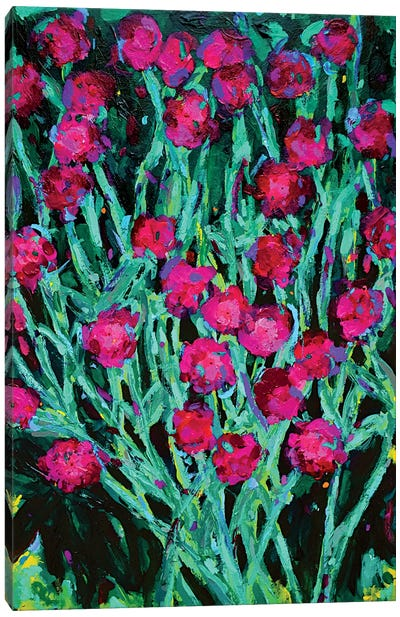 Rose Campinion Canvas Art Print