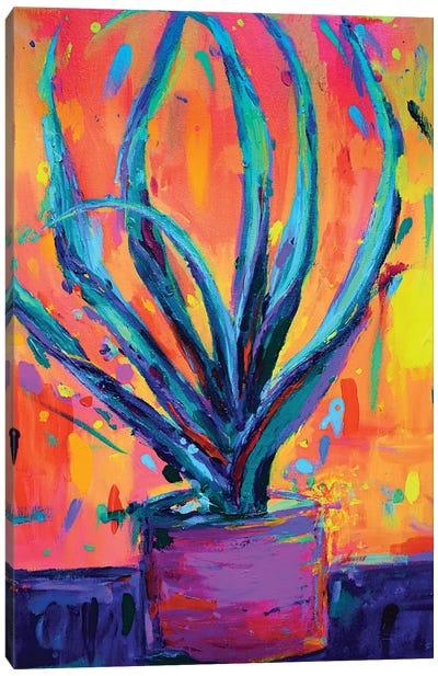 Aloe Vera Canvas Art Print