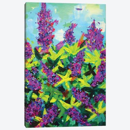 Buddleia Canvas Print #DUW9} by Dawn Underwood Canvas Print